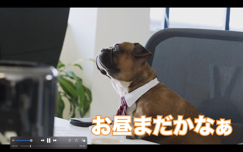 誰でも分かる動画・映像編集 〜実践編〜